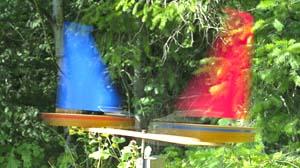 whirlygig model sailboats, toy sailboats